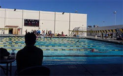 WILCOX-WaterPolo